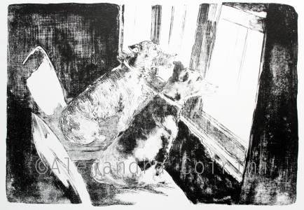 El Jagger y el Bosco mirando por la ventana
