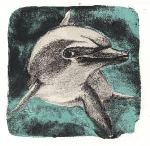 Bello Delfin