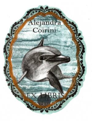 Bello Delfin 2°