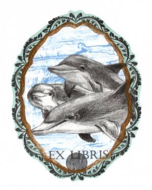 Danza de Delfines 2°