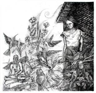El Jardín de los Colibríes